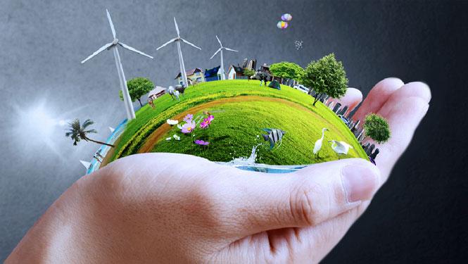 ökologische Umstellung